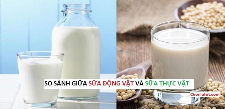 So sánh giữa sữa động vật và sữa  thực vật